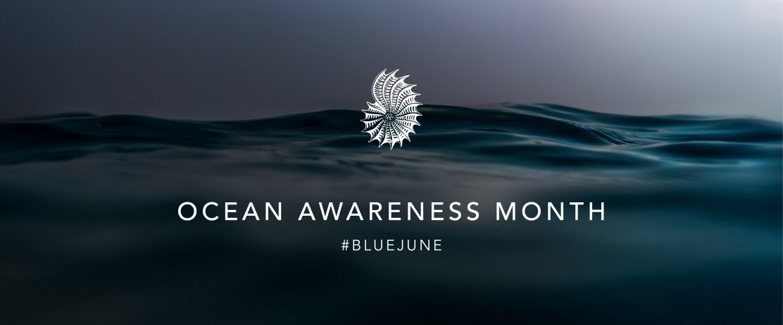 panthalassa-blue-june-ocean-awareness