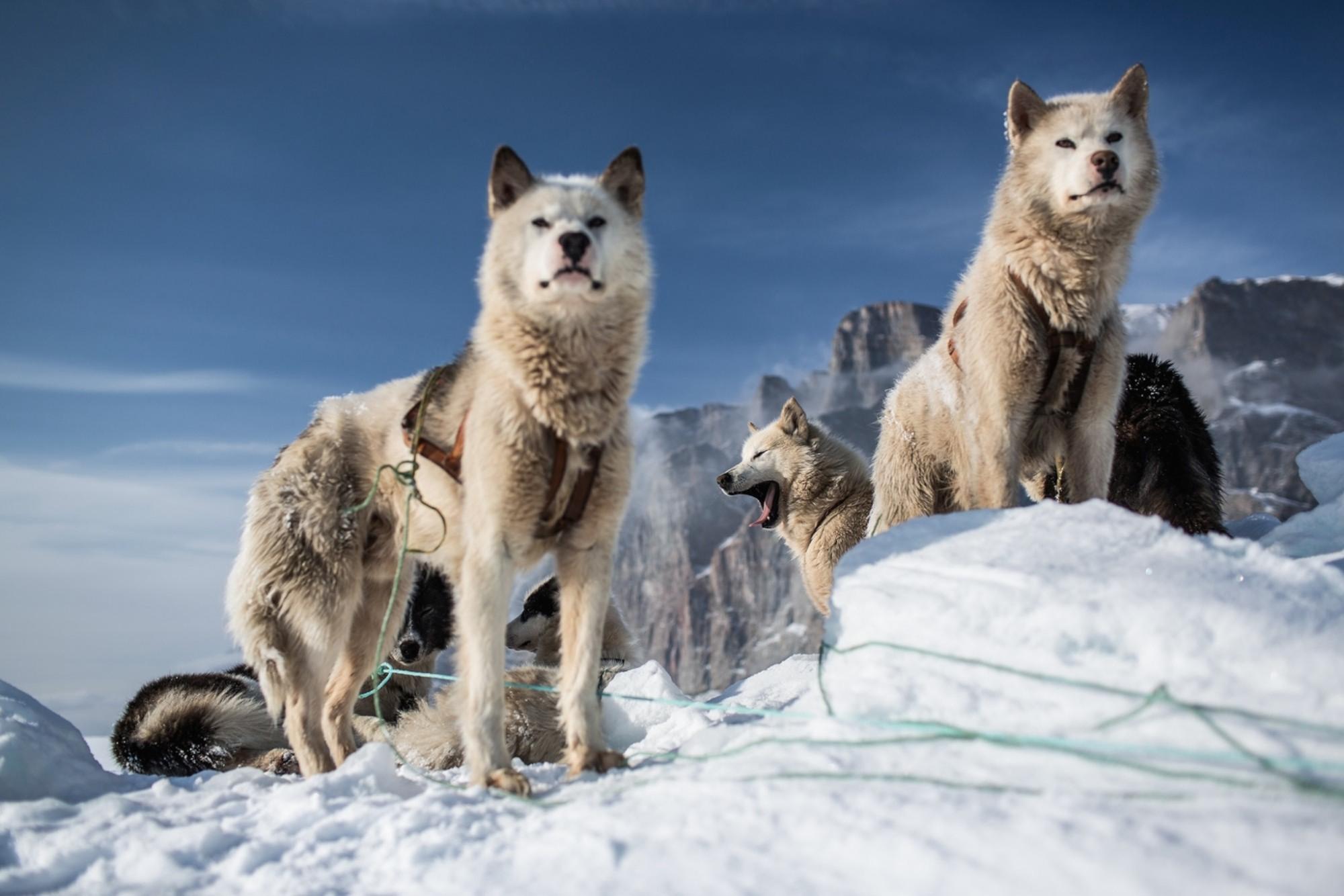 Cirili Jazbec 014-On-thin-ice-NEW