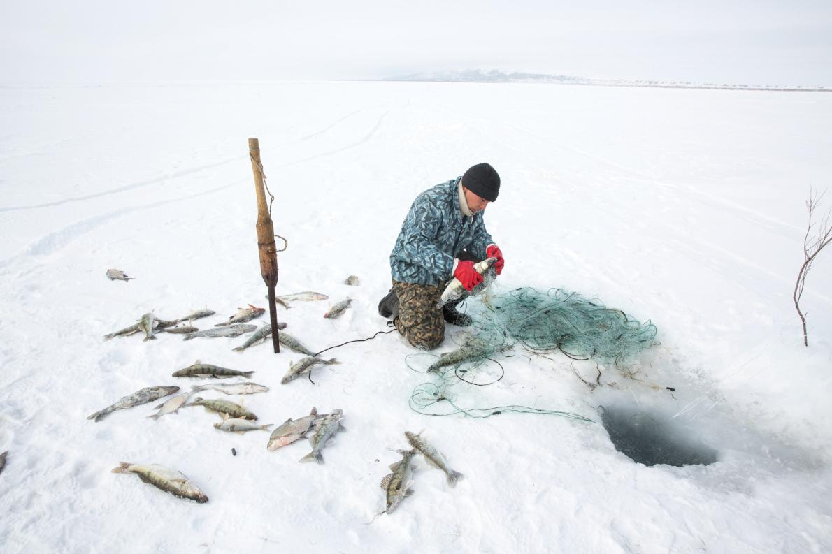 Taylor Weidman Aral Sea Panthalassa